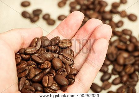 Coffee Bean In Hand