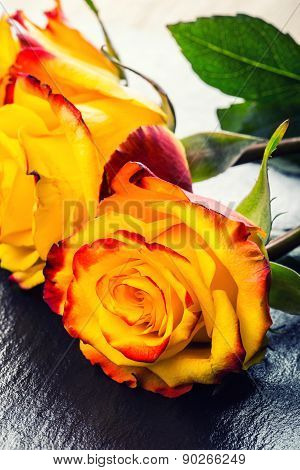 Orange rose. Yellow rose. Several orange roses on Granite background