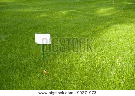 Lawn With Green Grass And A Plaque On The Lawn.