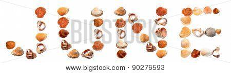 J U N E Text Composed Of Seashells