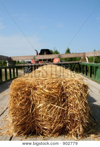 All Aboard For A Hayride!