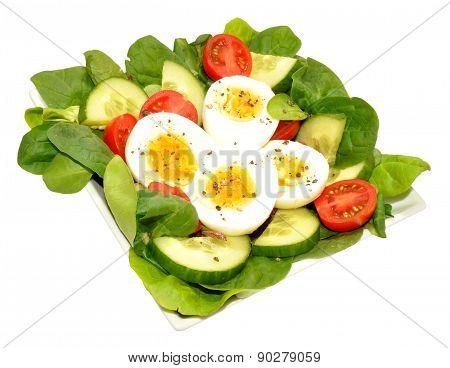 Fresh Egg And Tomato Salad Bowl
