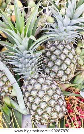 Pineapple Fruits Close Up Shot.