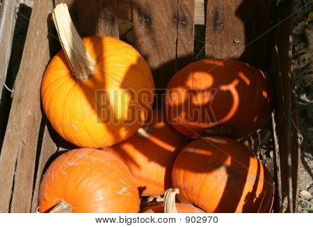 Smiling Shadow Pumpkin