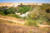 pic of suspension  - Suspension bridge and Besor Brook in Eshkol National Park Negev desert - JPG