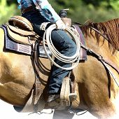 foto of lasso  - Part of cowboy equipment for horse riding  - JPG