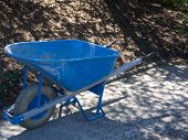 stock photo of wheelbarrow  - The color of a bright blue wheelbarrow stands out in a park - JPG