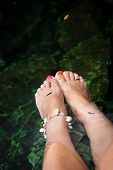 foto of cenote  - Fish spa therapy with female legs in mexican cenotes - JPG
