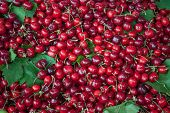 pic of cherry  - A pile of fresh cherries at market - JPG