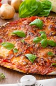 picture of hot fresh pizza  - Cheese pizza with fresh tomato and chilli basil hot spicy sauce - JPG