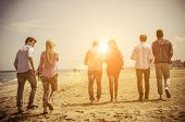 picture of mans-best-friend  - Multi-ethnic group of friends walking on the beach and talking - Group of young adults silhouettes at sunset ** Note: Soft Focus at 100%, best at smaller sizes - JPG