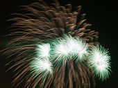 image of night-blooming  - spectacular beautiful bright fireworks a fiery green flowers bloom in the night black sky - JPG