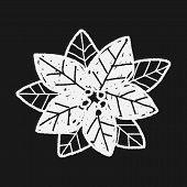 stock photo of poinsettias  - Poinsettia Doodle - JPG