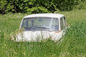 picture of junk-yard  - abandoned old car in yard surrounded with green grass - JPG