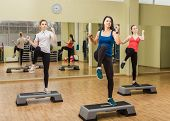 stock photo of step aerobics  - Group of women making step aerobics in the fitness class