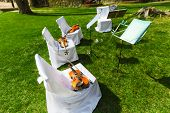picture of violin  - Outdoors wedding ceremony begins  - JPG