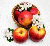 picture of apple blossom  - basket with apples and apple tree blossoms on a wooden table - JPG