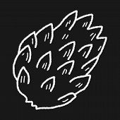 pic of custard  - Custard Apple Doodle - JPG