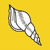 image of beach shell art  - Shell Doodle - JPG
