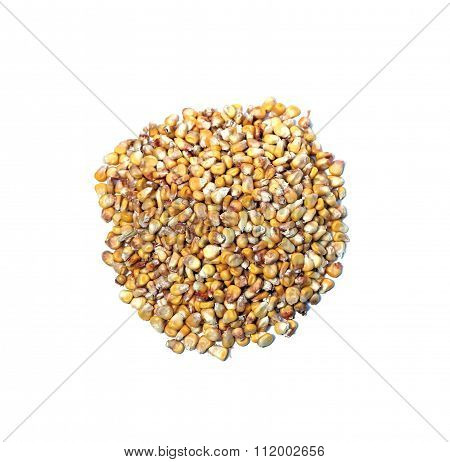 Placer Of Yellow Corn Isolated