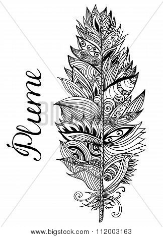 Black white plume on the isolated background with lettering. Vector illustration.