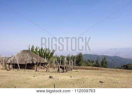 Farmland and simple hut in Ethiopian highlands