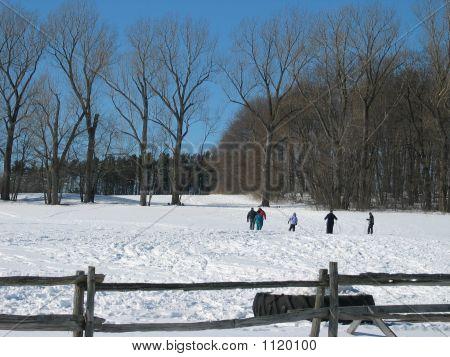 Winter Fun 2