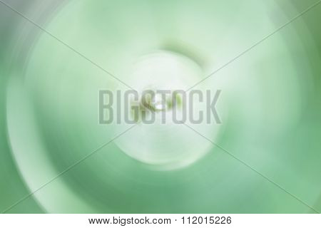 Abstract Green Leaves Background Of Spin Blur