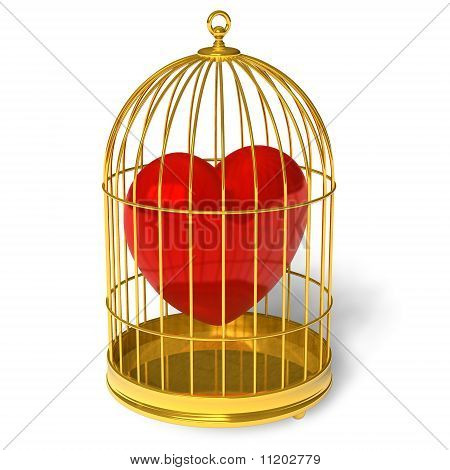 Heart in cage