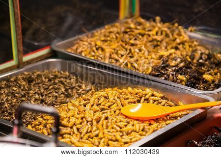 Pattaya, Thailand - Circa August 2015: Fried Insects Like Bugs, Grasshoppers, Larvae, Caterpillars A