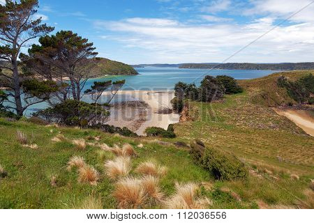 View Of Native Island From Stewart Island, Wohlers Monument Lookout