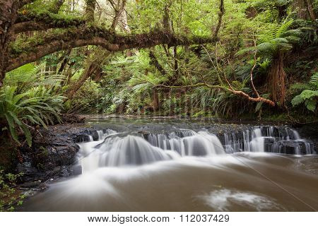 Small But Beautiful Rapid On Purakaunui River, New Zealand