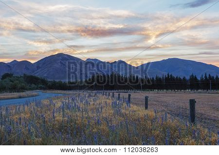Magnificent  Sunset Over Canterbury Hills And Farmlands, New Zealand