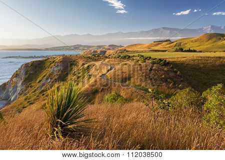 Golden Sunset  Over Kaikoura Peninsula Walkway, New Zealand