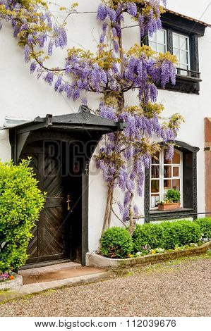 Cottage With Wisteria