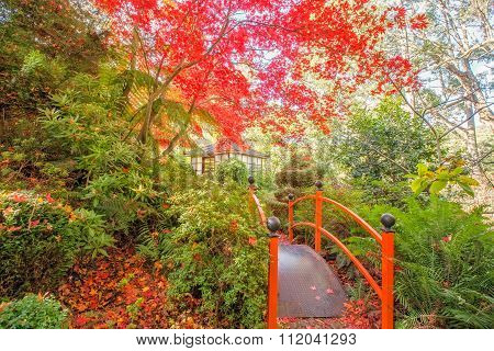 Japanese Garden With Footbridge And Gazebo In Autumn