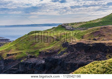 Phillip Island Nature Park - Landscape Of Green Hills And Rugged Coastline
