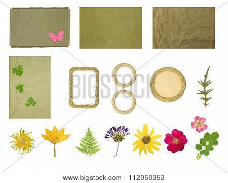 Set Elements For Scrapbooking. Frames Braided Jute Thread. Dried Pressed Flowers.