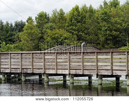 Wooden Boardwalk Green Cay Wetlands Florida