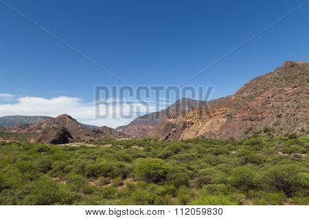 Quebrada de las Conchas, Northwest Argentina