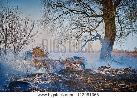 Fire In The Meadow