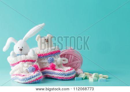 Newborn Announcement Concept