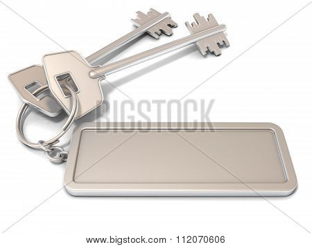 Two door keys and rectangular blank label on ring. 3D
