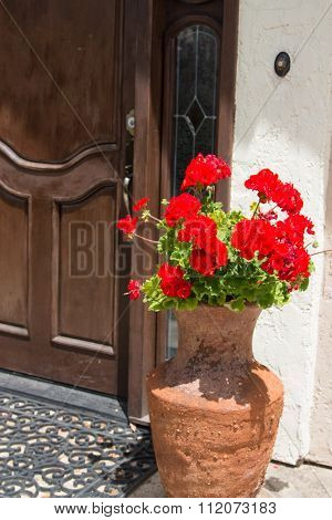 An urn of red geraniums outside of the front door of a home.