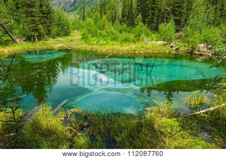 Lake Forest Turquoise Mountain