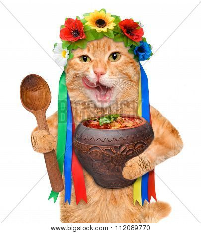 Cat in the traditional Ukrainian costume holds in paws national red borsch .