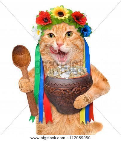 Cat in the traditional Ukrainian costume holds in paws soup national varenyky.