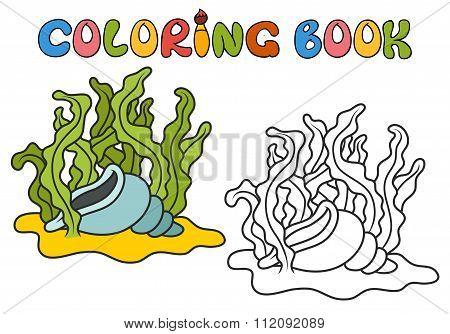 Seashell In Algae