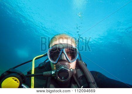 Diver, Showing Straight At Camera