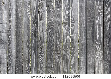 Old  Wooden Fence From Boards Of Pine With The Noble Gray Tint
